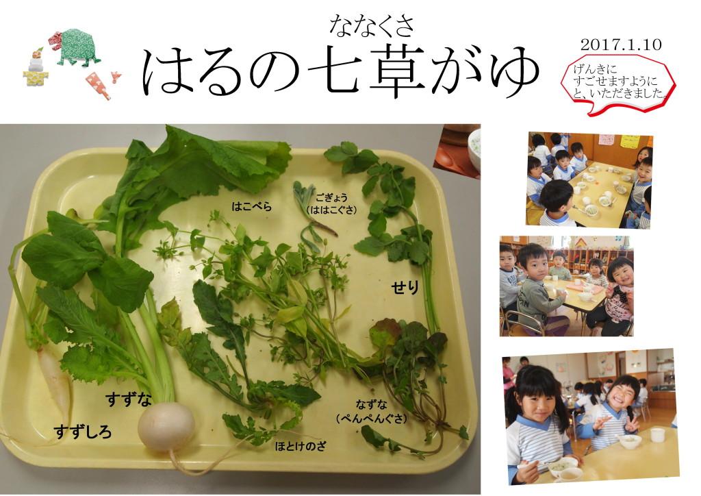 2017.1.10 春の七草
